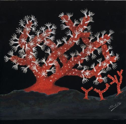 Le corail rouge de Méditerranée
